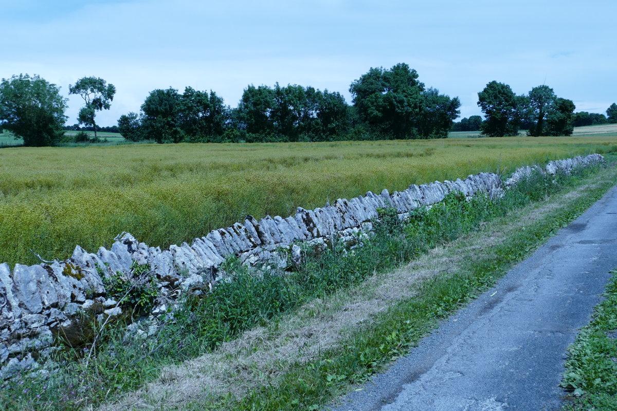 Entre  Puyroland et Nachamps